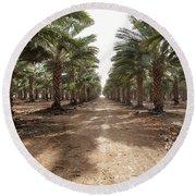 Date Grove #3 Round Beach Towel by Yoel Koskas