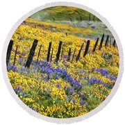 Field Of Gold And Purple Round Beach Towel