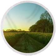 Round Beach Towel featuring the photograph Field Of Gold by Anne Kotan