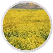 Round Beach Towel featuring the photograph Field Of Goldfields by Marc Crumpler