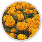 Field Of Orange Marigolds Round Beach Towel
