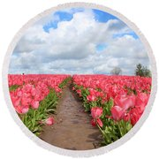 Field Of Pink Round Beach Towel