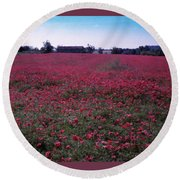 Field Of Poppies, France Round Beach Towel