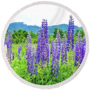 Field Of Purple Round Beach Towel by Greg Fortier