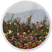 Round Beach Towel featuring the photograph Field Of Roses by Laurel Powell