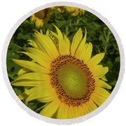 Field Of Sunflowers Round Beach Towel by Garry McMichael