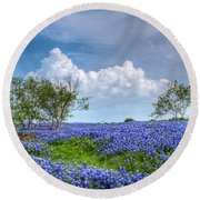 Field Of Texas Bluebonnets Round Beach Towel