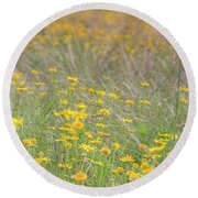 Field Of Yellow Flowers In A Sunny Spring Day Round Beach Towel