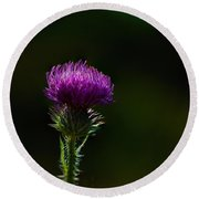 Field Thistle Round Beach Towel