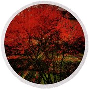 Round Beach Towel featuring the photograph Fiery Dance by Mimulux patricia no No