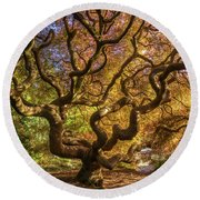 Fiery Fall Colors Tree Of Life Round Beach Towel