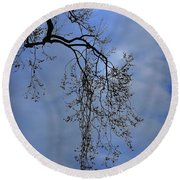 Round Beach Towel featuring the photograph Filigree From On High by Skip Willits