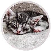 Finally Asleep  Copyright Mary Lee Parker 17  Round Beach Towel