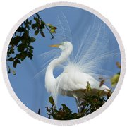 Round Beach Towel featuring the photograph Finery by Fraida Gutovich