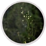 Finnon Wildflowers Round Beach Towel