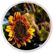 Fire In The Garden Round Beach Towel by Angela J Wright