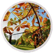 Round Beach Towel featuring the photograph Fire Leaves by Tgchan
