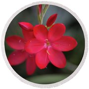 Fire Lily 2 Round Beach Towel