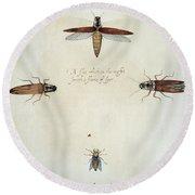 Fireflies & Gadfly, 1585 Round Beach Towel