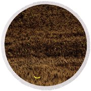 Fireflies And Wheat Round Beach Towel