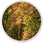 Round Beach Towel featuring the photograph Fires Of Autumn by Judy Wolinsky