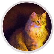 Fireside Feline Round Beach Towel