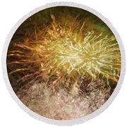 Round Beach Towel featuring the photograph Fireworks 10 by Joan Reese