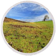 Round Beach Towel featuring the photograph First Flowers On North Table Mountain by James Eddy