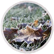 Round Beach Towel featuring the photograph First Frost by Helga Novelli