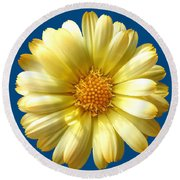 First Sign Of Summer On Blue Round Beach Towel