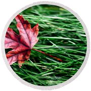 First Signs Of Autumn Round Beach Towel