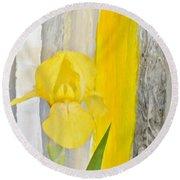 First Yellow Iris Round Beach Towel by Marsha Heiken