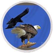 Fish Crow Dive Bombs Eagle Round Beach Towel