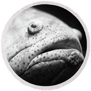 Fish Face Round Beach Towel