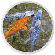 Fish Fighting For Food Round Beach Towel