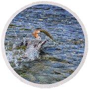 Round Beach Towel featuring the photograph Fish Gulp by David Lawson