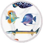 Fish Poster 001 Round Beach Towel
