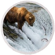 Fishing Brown Bear At Brooks Falls, Katmai National Park Round Beach Towel