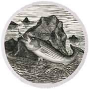 Round Beach Towel featuring the photograph Fishing The Rocks by Charles Harden