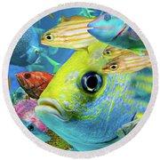 Fishy Collage 02 Round Beach Towel