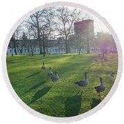 Five Ducks Walking In Line At Sunset With London Museum In The B Round Beach Towel