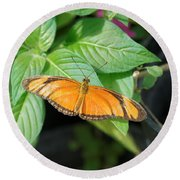 Round Beach Towel featuring the photograph Flambeau Butterfly by Paul Gulliver