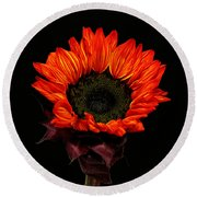 Round Beach Towel featuring the photograph Flaming Flower by Judy Vincent