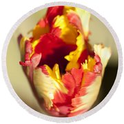 Flaming Parrot Round Beach Towel