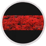 Round Beach Towel featuring the photograph Flaming Red Panorama II By Kaye Menner by Kaye Menner