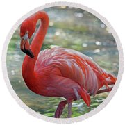 Flamingo 2  Round Beach Towel by Larry Nieland