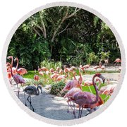 Flamingo Flock Round Beach Towel by Daniel Hebard