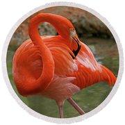 Flamingo II Round Beach Towel