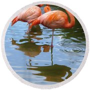 Round Beach Towel featuring the photograph Flamingo Reflections by Margaret Bobb