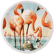 Flamingoes Round Beach Towel by English School